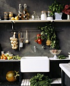 View of a kitchen: shelves of food and kitchen sink