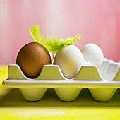 Eier auf einer Palette mit einer grünen Feder