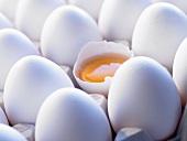 White eggs in an egg tray, one broken open