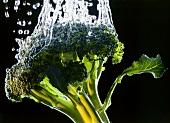 Brokkoli wird gewaschen