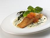 Salmon fillet with basil sauce