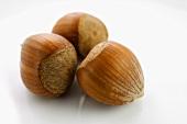 Three hazelnuts