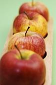 Apples in unusual fruit bowl