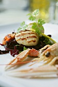 Plate of seafood with langoustine and scallops