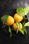 Blood oranges ('Tarocco' variety) in a bowl