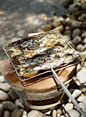 Grilling sardines