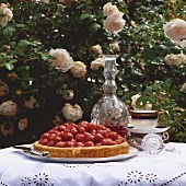 Strawberry flan in front of rose bush