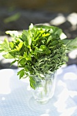 Bunch of herbs in a glass