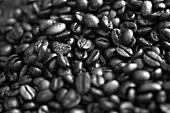 Roasted espresso beans