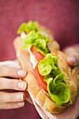 Zwei Hände halten ein Hähnchen-Sandwich