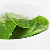 Stücke von Aloe-Vera-Blättern in einer Schale