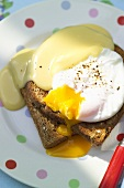 Welsh rarebit with poached egg