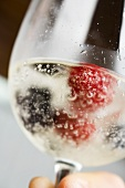 A glass of champagne with berry ice cubes
