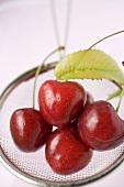 Four cherries in a sieve