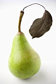 A pear with dried leaf