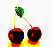 A pair of cherries with leaf