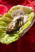 Oyster in a cabbage leaf