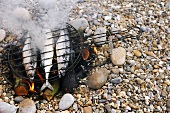 Three mackerel on a camp fire