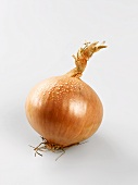 A brown onion