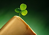 A block of butter with a clover leaf