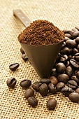 Ground coffee in coffee measure and coffee beans
