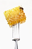 Honeycomb with bee on a fork