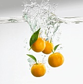 Clementines falling into water