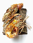 Grilled spiny lobsters