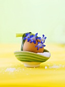 Boiled egg in egg cup with salt and flowers