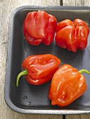 Four small red peppers