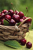 Fresh cherries in a basket (outdoors)