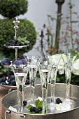 Champagne flutes on garden table with late summer decorations