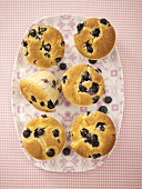 Six blueberry muffins (overhead view)