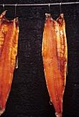 Smoking sides of salmon