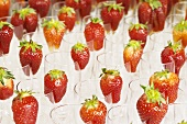 Glasses garnished with strawberries