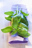 Sprigs of basil on fabric napkin