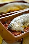Riba na keremida (Forelle mit Tomatensauce, Bulgarien)