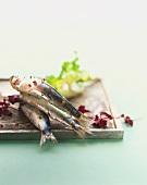 Three sardines on a square plate