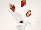 Strawberries falling into milk