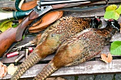 Still life with pheasants and hunting rifle