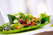 Frühlingssalat mit Gurke, Radieschen und Kirschtomaten