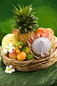 Basket of tropical fruit, plumeria and protea
