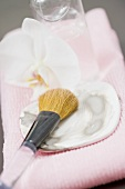 Cosmetic brush on a sea shell
