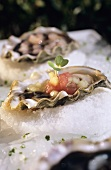 Oyster with watermelon and mignonette