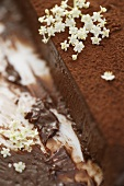 Elderflowers on chocolate cake (detail)