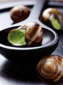 Uncooked snails with garlic and parsley
