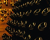 Champagne bottles in a pupitre (riddling rack)