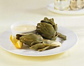 Artichokes with aioli (garlic dip)