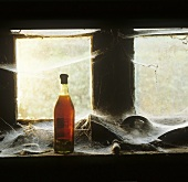 An old cognac bottle in front of a dirty window