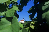 The wine village of St. Anna am Aigen, Styria, Austria